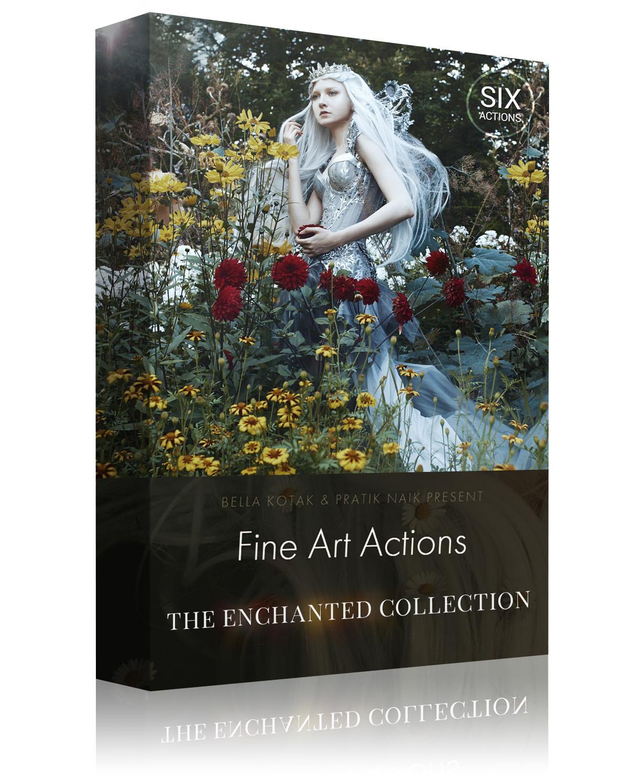 Box Design - The Enchanted Collection-1.jpg
