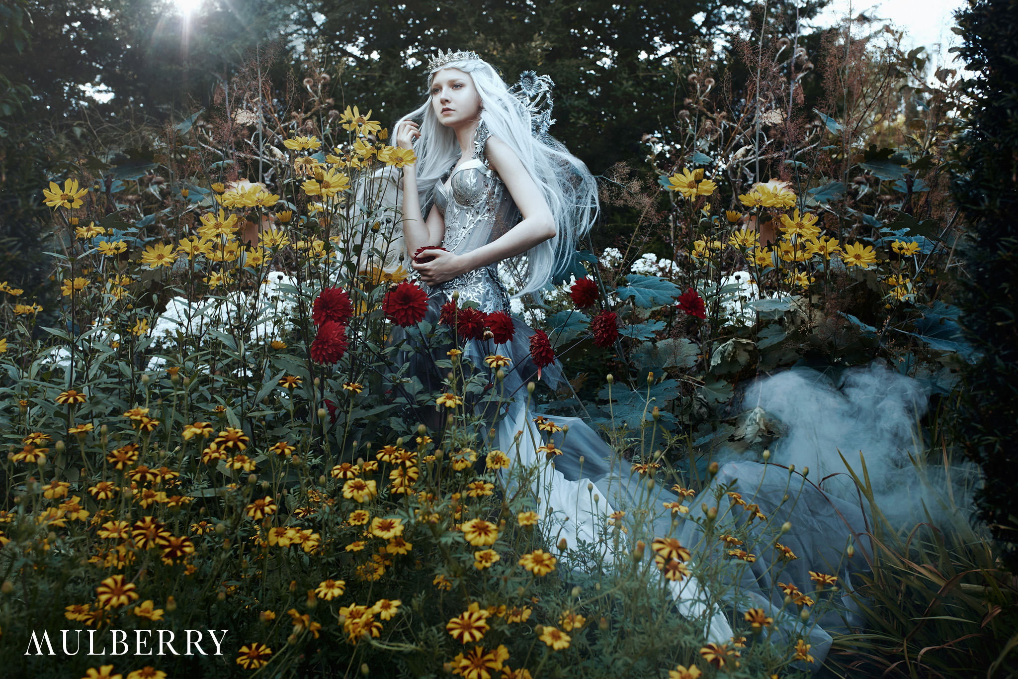 text_s_The Enchanted Collection Working_1 - Mulberry.jpg