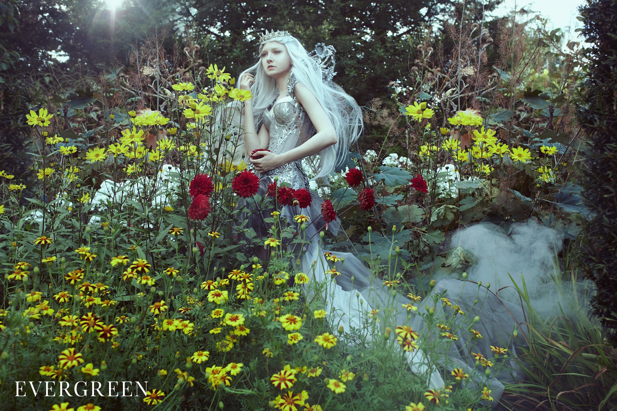 text_s_The Enchanted Collection Working_3 - Evergreen.jpg