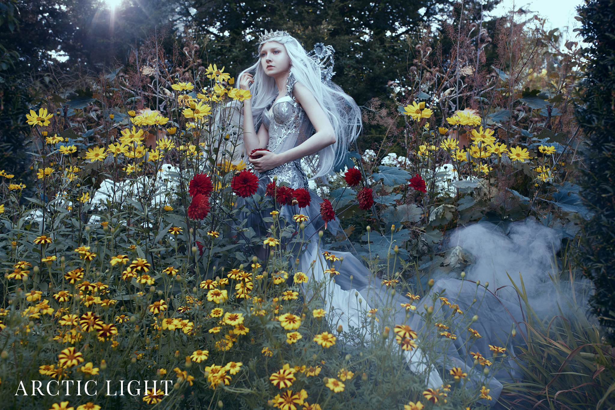text_s_The Enchanted Collection Working_5 Arctic Light.jpg