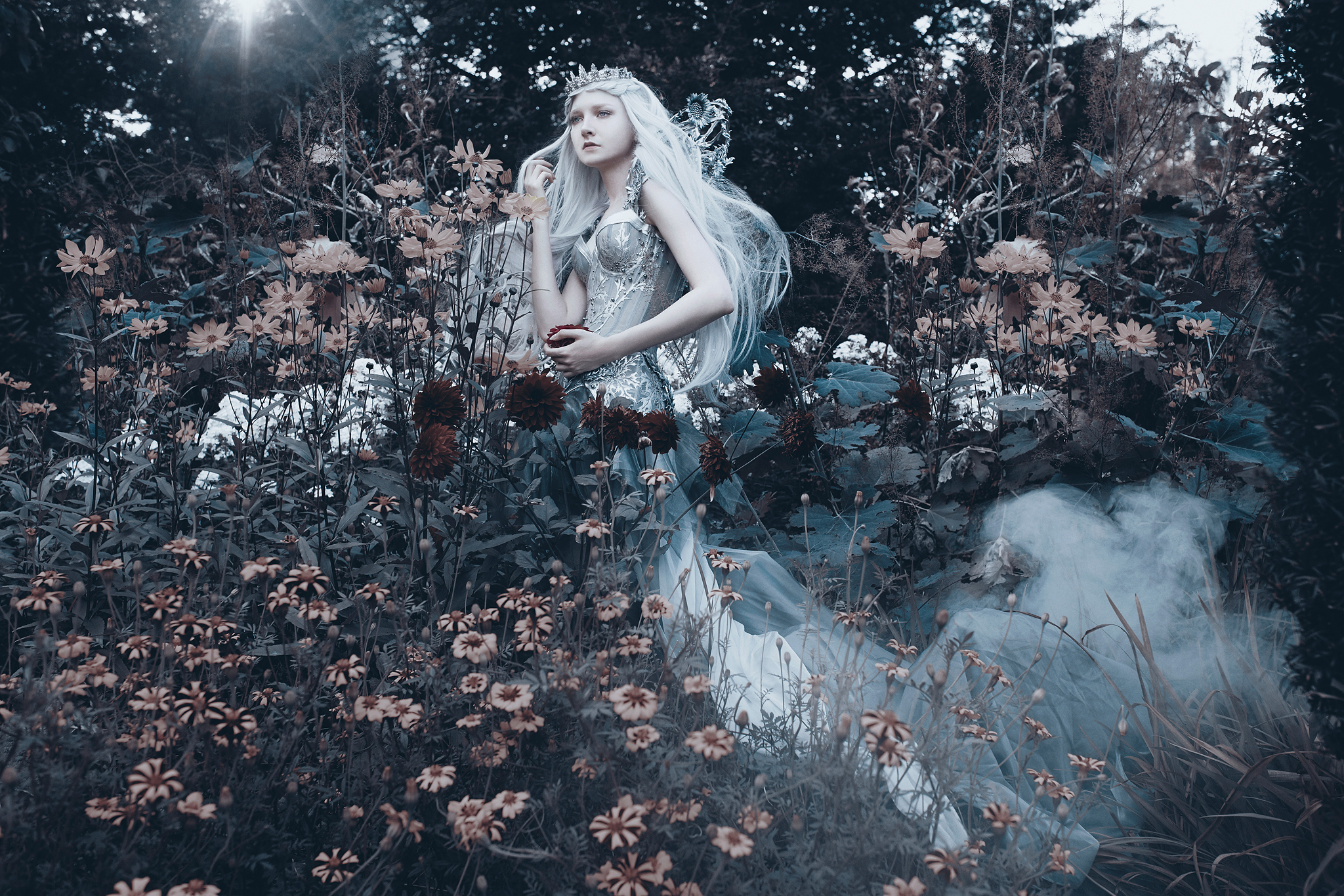The Enchanted Collection - Glacial Frost.jpg