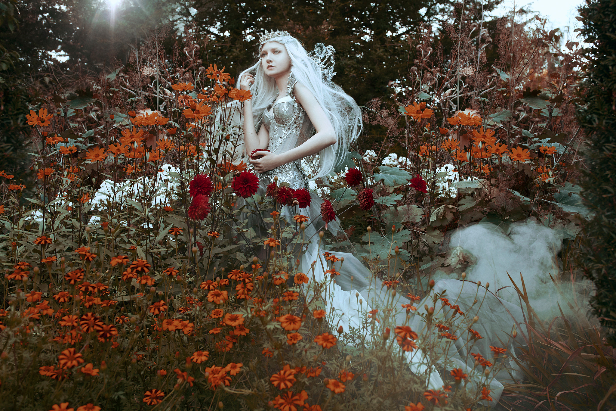 The Enchanted Collection - Winter Orange.jpg