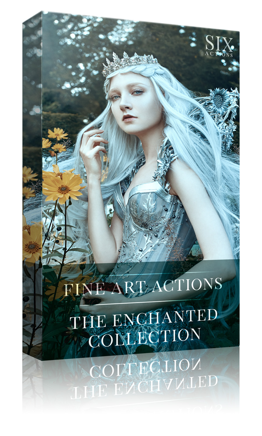 Box Template - The Enchanted Collection.jpg