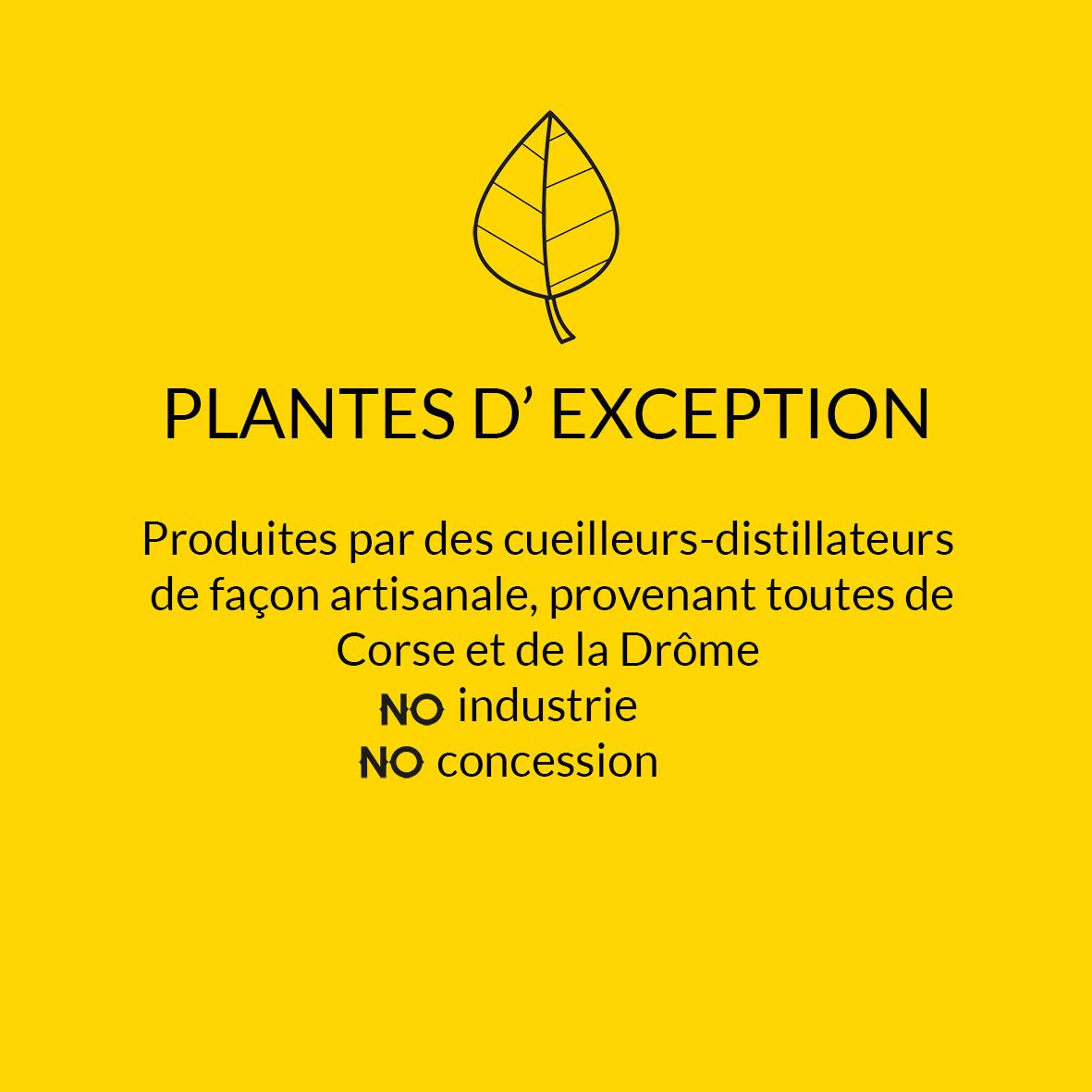 plantes d'exception.jpg