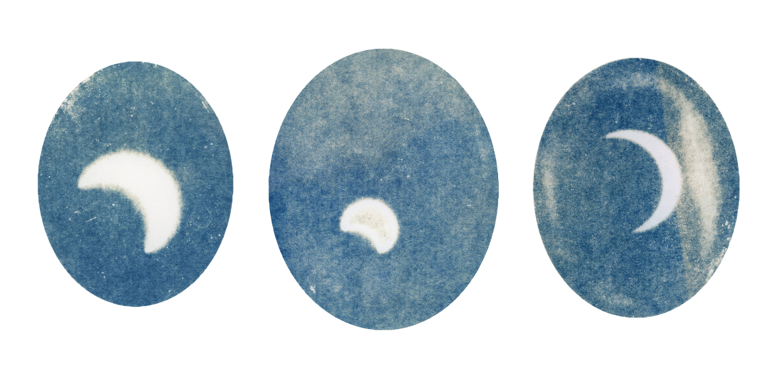 A triplet of the final cyanotypes.