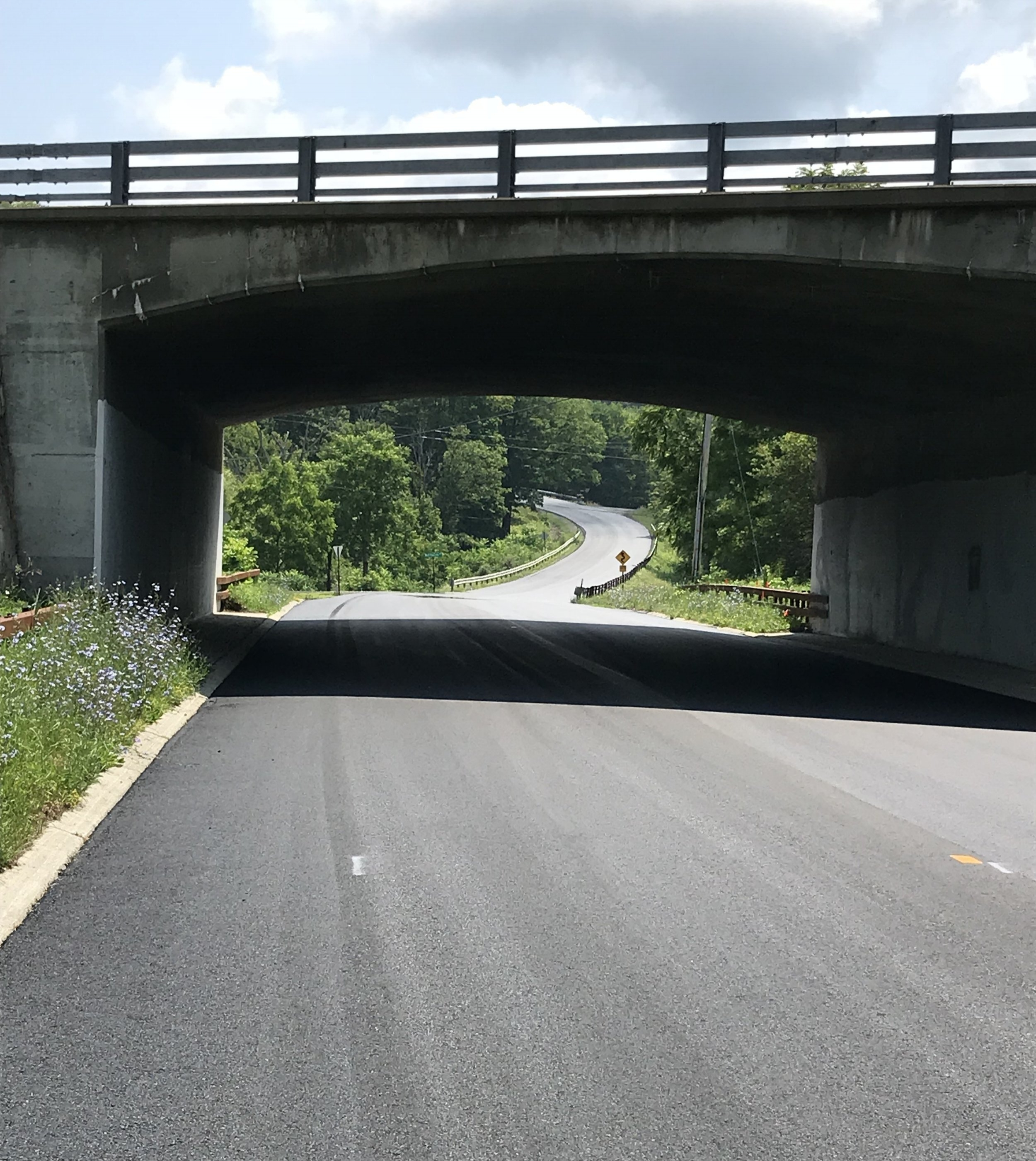 Two miles of newly paved Columbia County Route 8 passes under the Taconic State Parkway and climbs to cycling heaven.