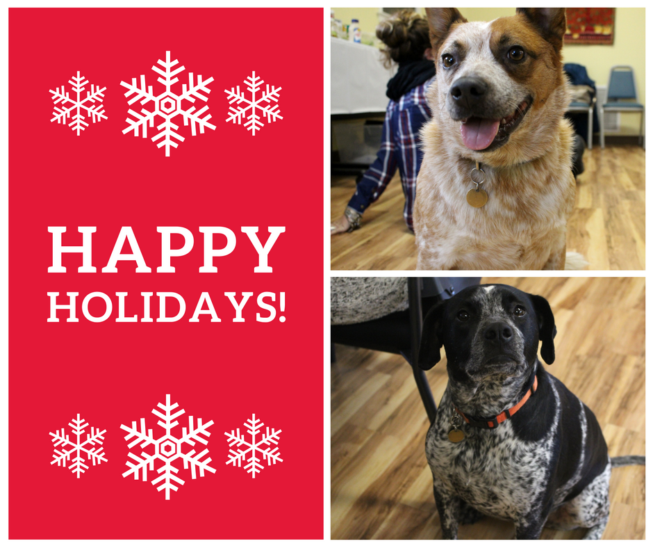 Southern Rhode Island Volunteers' Office Dogs Briar (above) and Shooter (below) wishing everyone some holiday cheer!