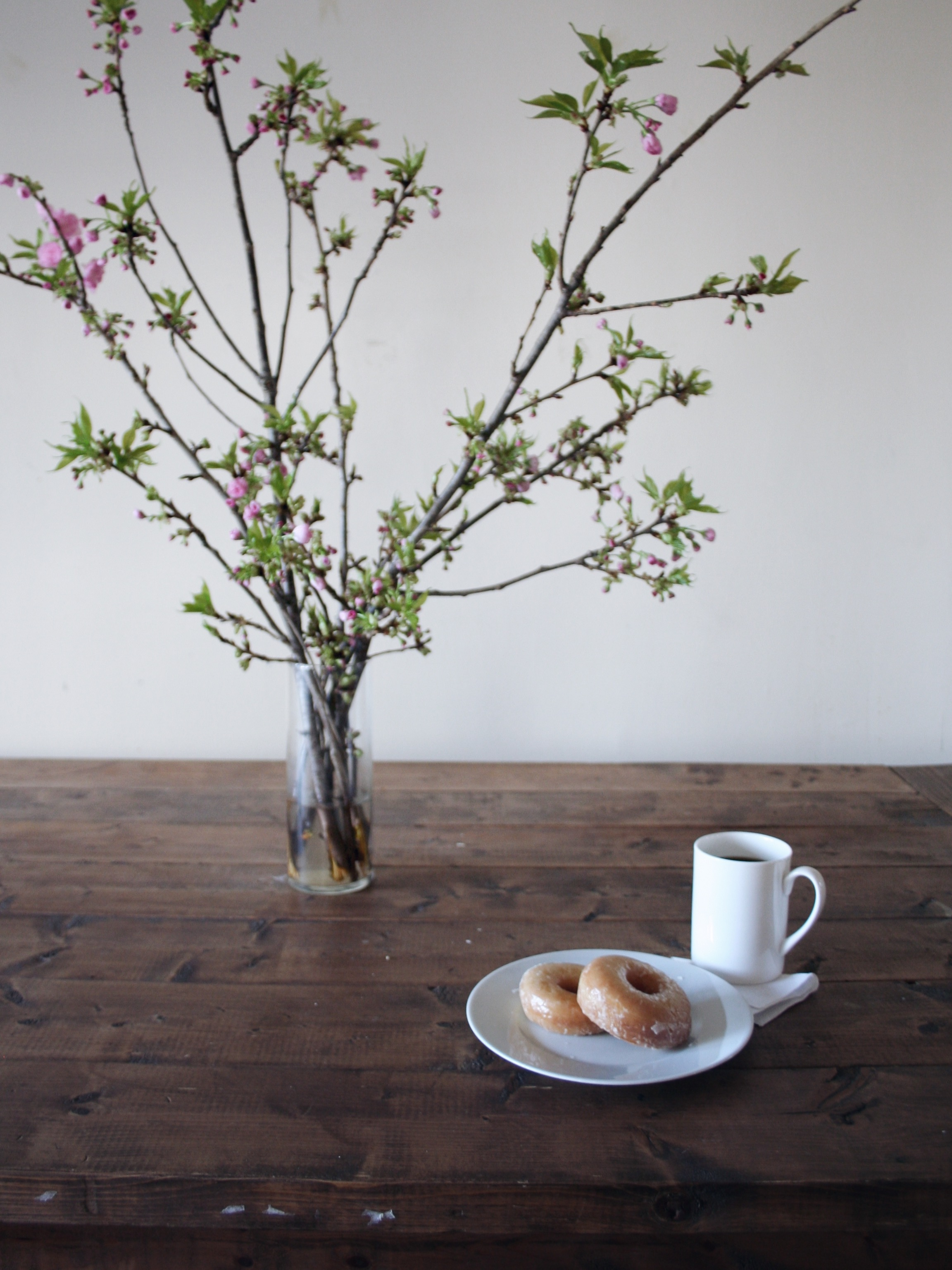 Slow Sunday: Donuts, coffee, and Kwanzan blossoms