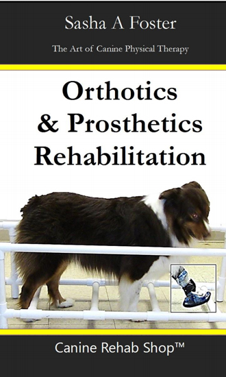 orthotics-rehabilitation-book-cover.jpg