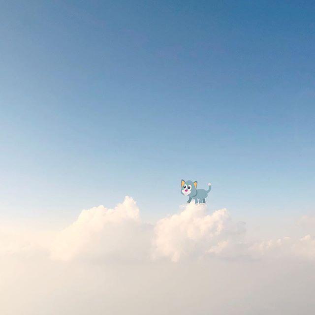 Cloud 9 kitty ☁️😺☁️ #lookingup #clouds #sky #blue #kitty #giddyfingers