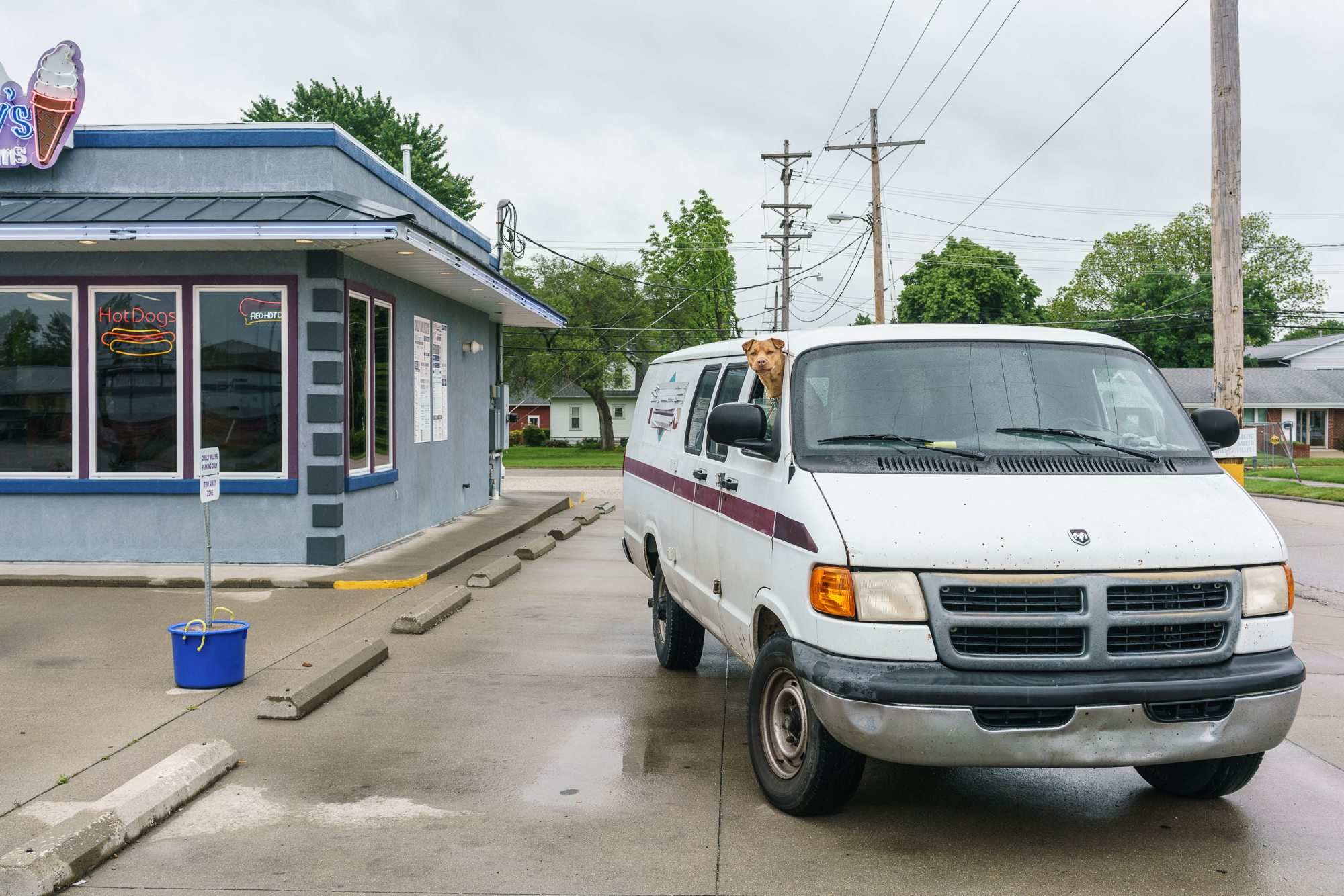 Van Dog, Olney, Illinois, 2016