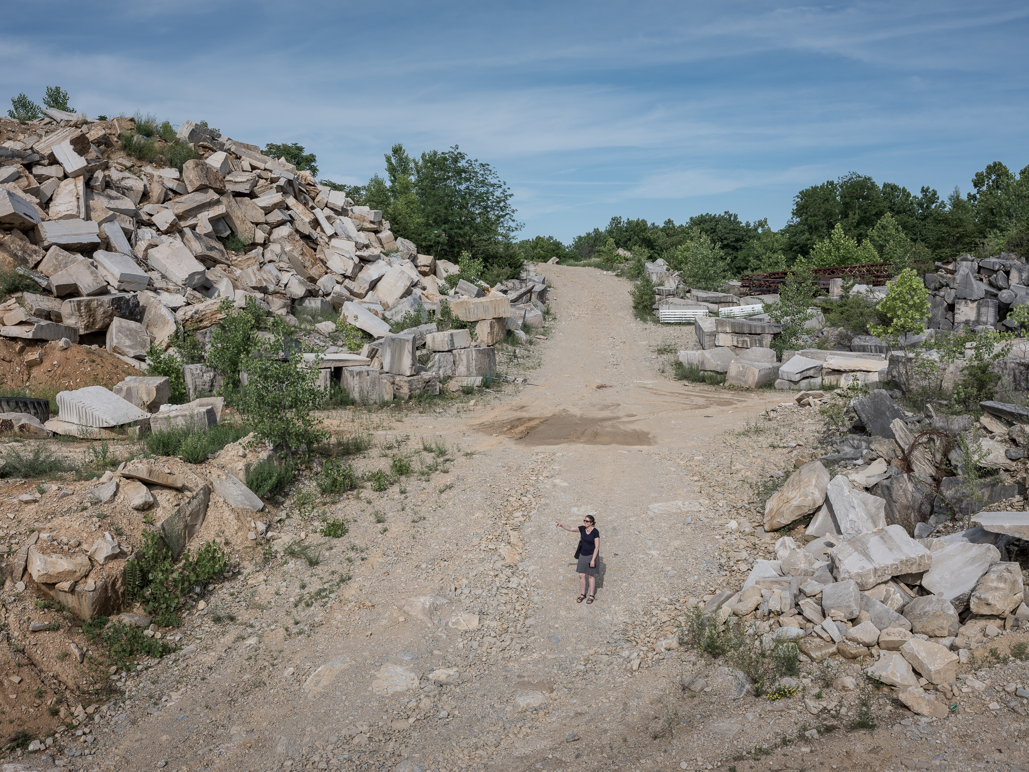 Pointer, Reed Quarries, Bloomington, Indiana, 2018