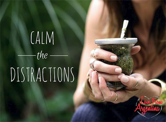Learn About Yerba Maté - Often referred to by the Amazonians as the