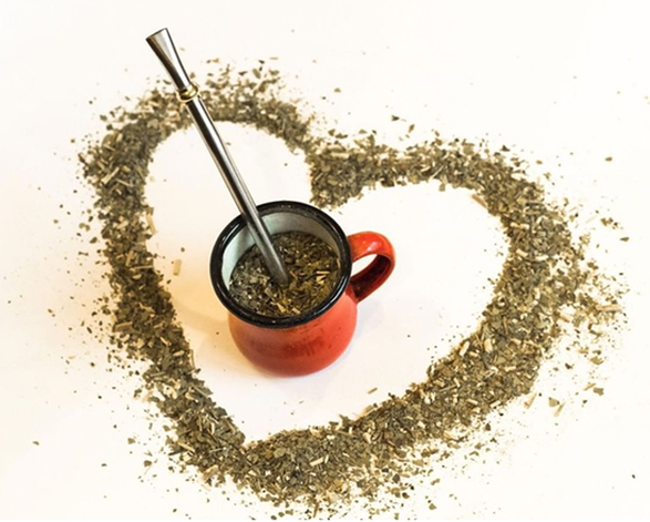 - Even though yerba mate has caffeine, most caffeine-sensitive individuals don't experience the harsh side effects (jitters, stomach upset, headaches, addiction) common with coffee and black or green tea. That's because yerba mate has a low tannin content and isn't oily and acid forming, so it is less likely to cause stomach acid and jitters.The indigenous people of the area in South America in which the Ilex paraguariensis tree grows, used yerba mate tea for centuries, not only as a social beverage, but also as a medicinal one. Scientific research done over only the last two decades is revealing many health benefits that will be discussed elsewhere on this website.Whether you are seeking an invigorating coffee alternative, or simply looking to try something new, yerba mate is a wonderful herbal tea option. Now you can enjoy yerba mate in loose-leaf form, letting you experience the tea the authentic South American way.