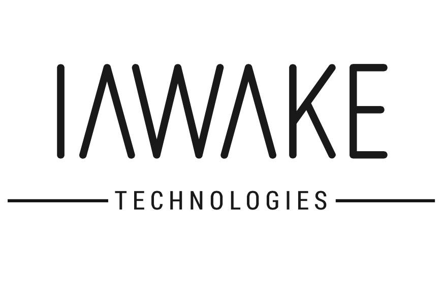 iAwake-Logo-flowinconcept-netzwerk.png