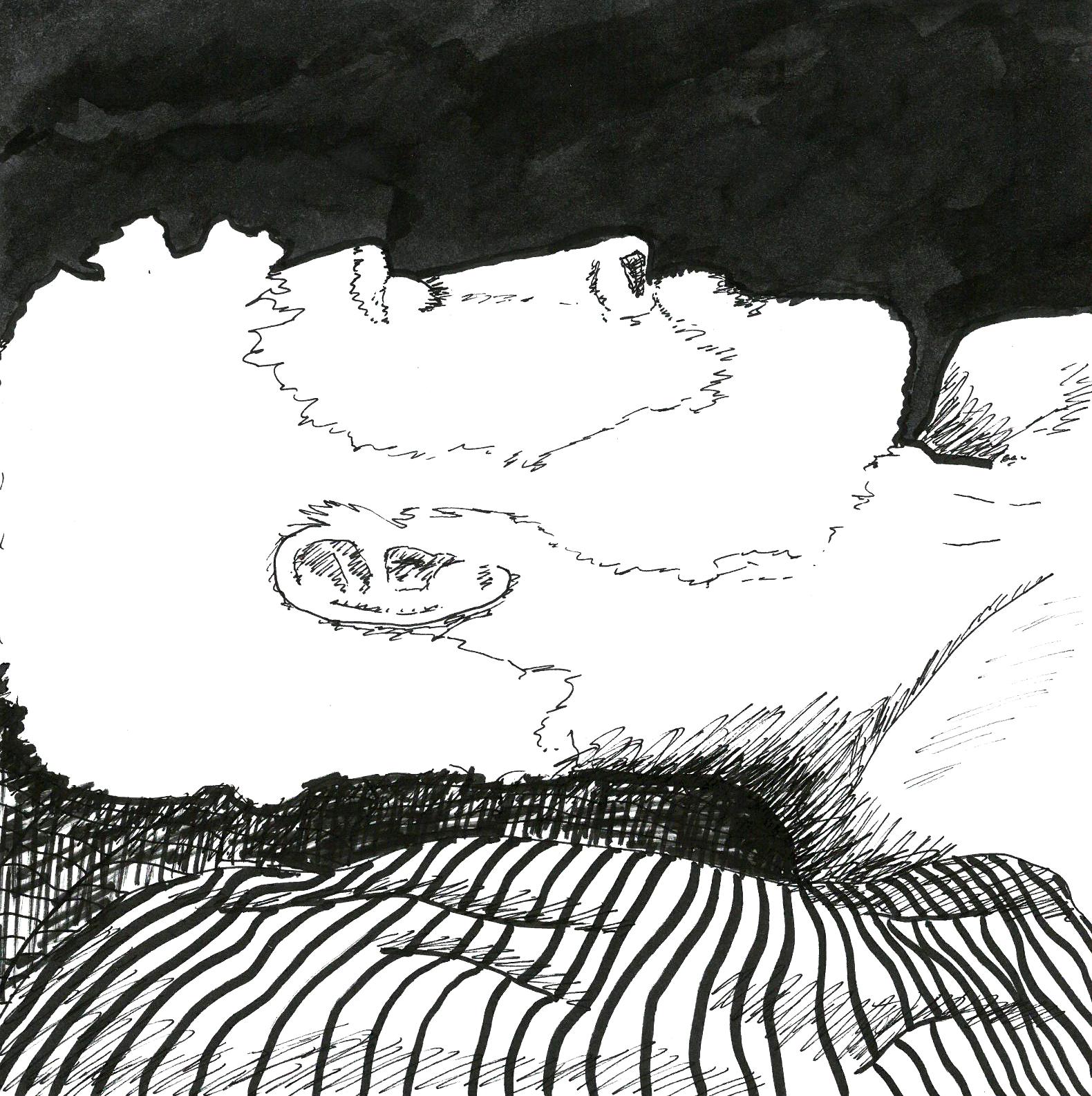 Danny Sleeps