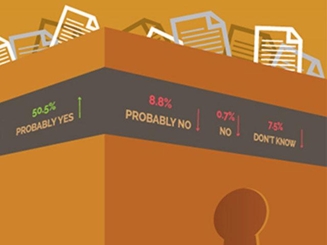 Litigation Insights Infographics -