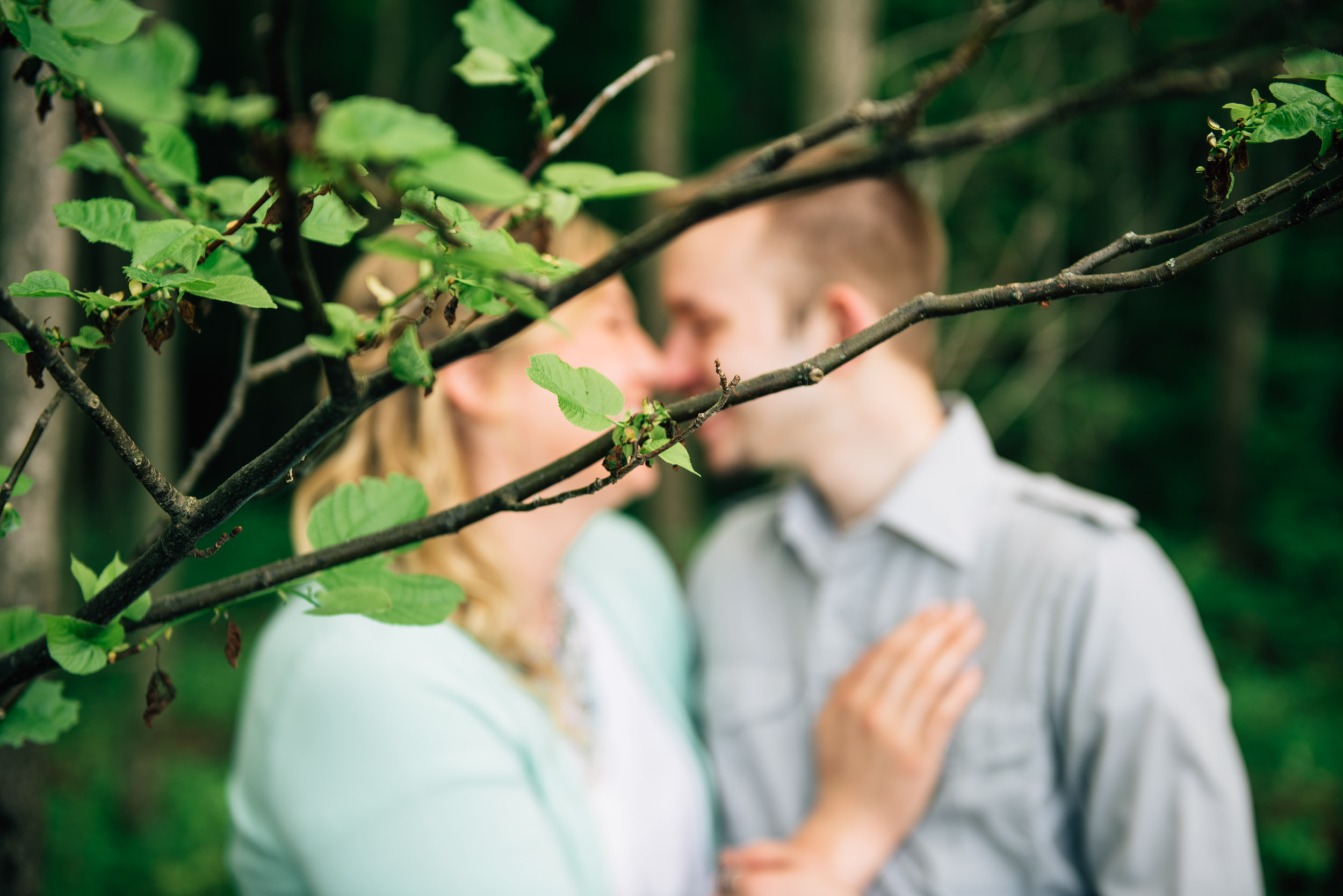 Kiss behind the branches