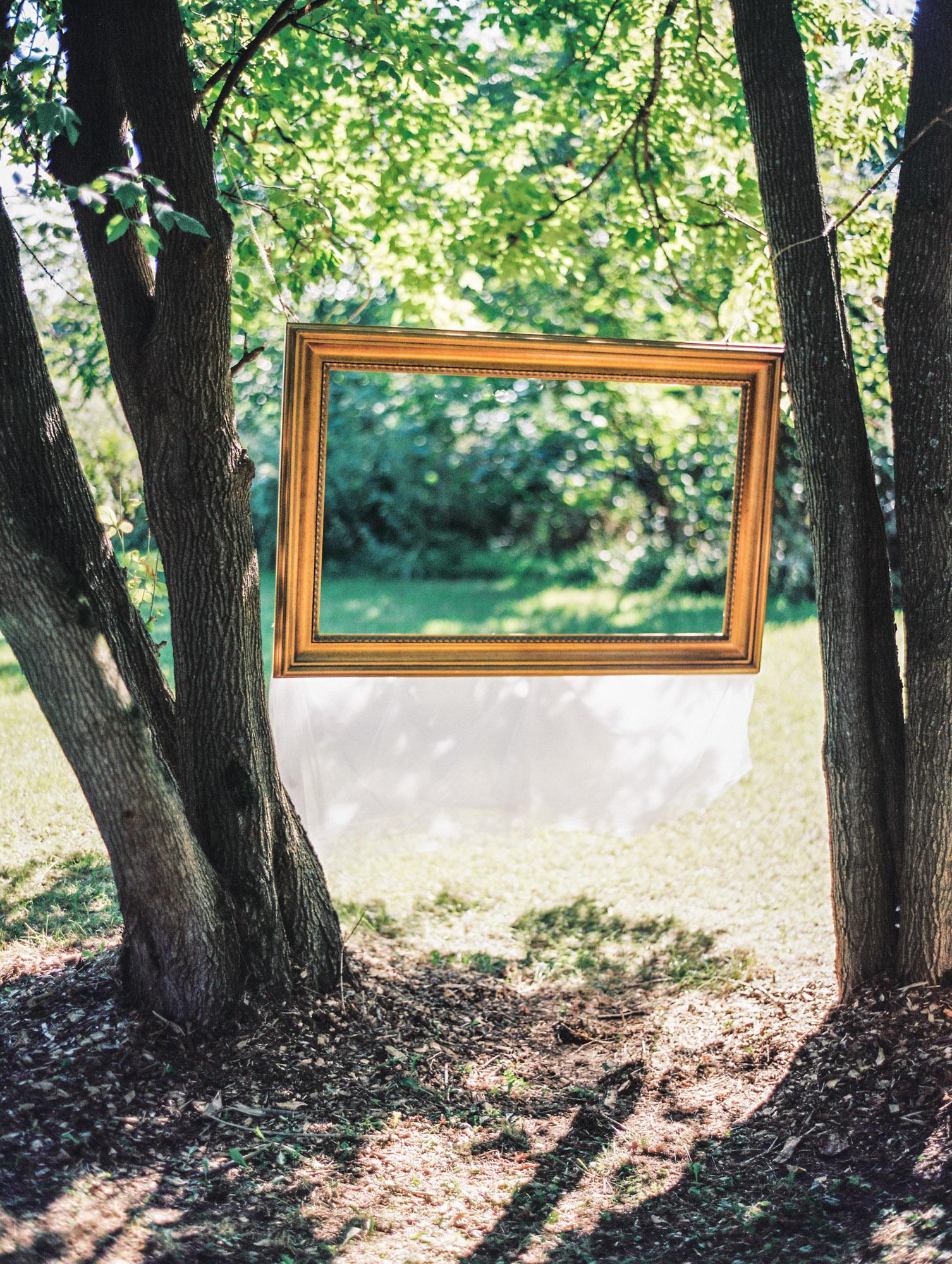 Frame between trees