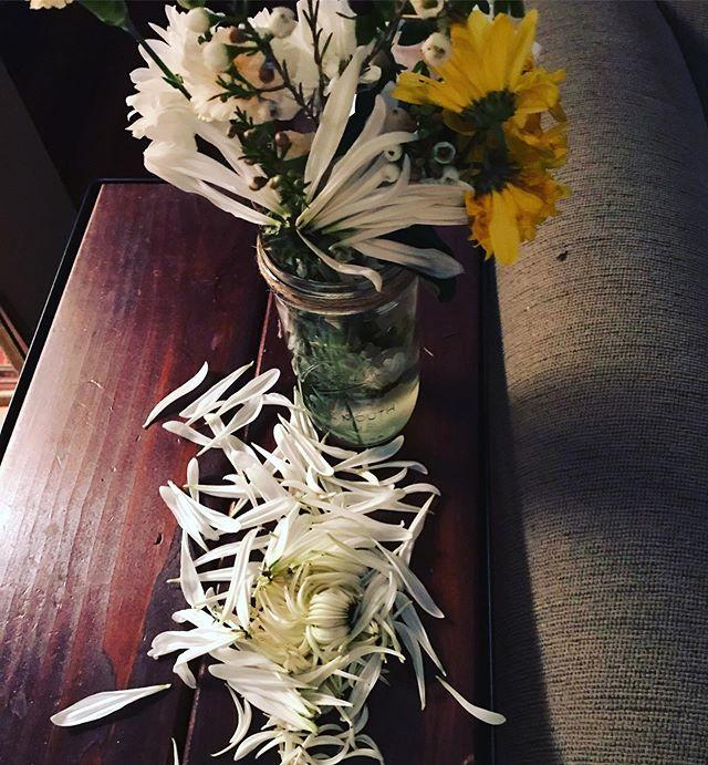 I get it, flower… I get it. #givenup #sendhelp #done