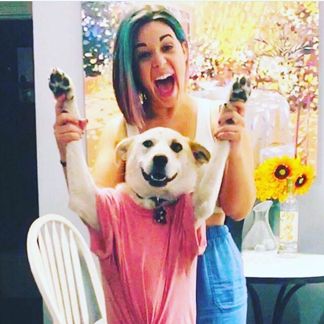 Who's adorable? #adorablepup #adorabledog #adorableanimals