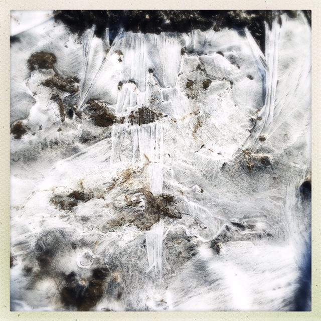 ice, a bog, denver