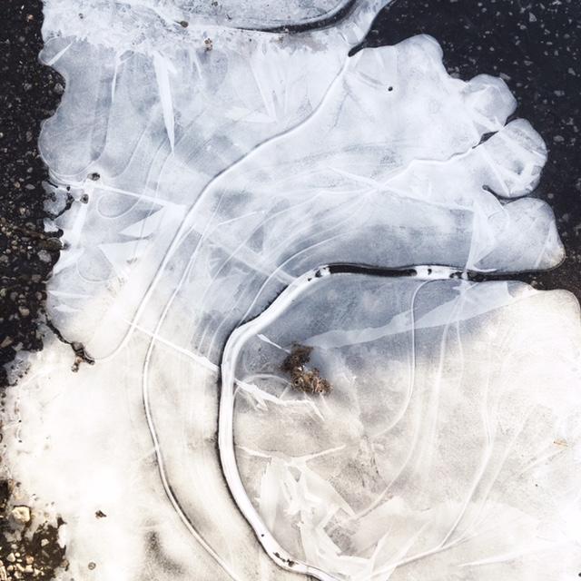 Ice, sun, the parking lot.
