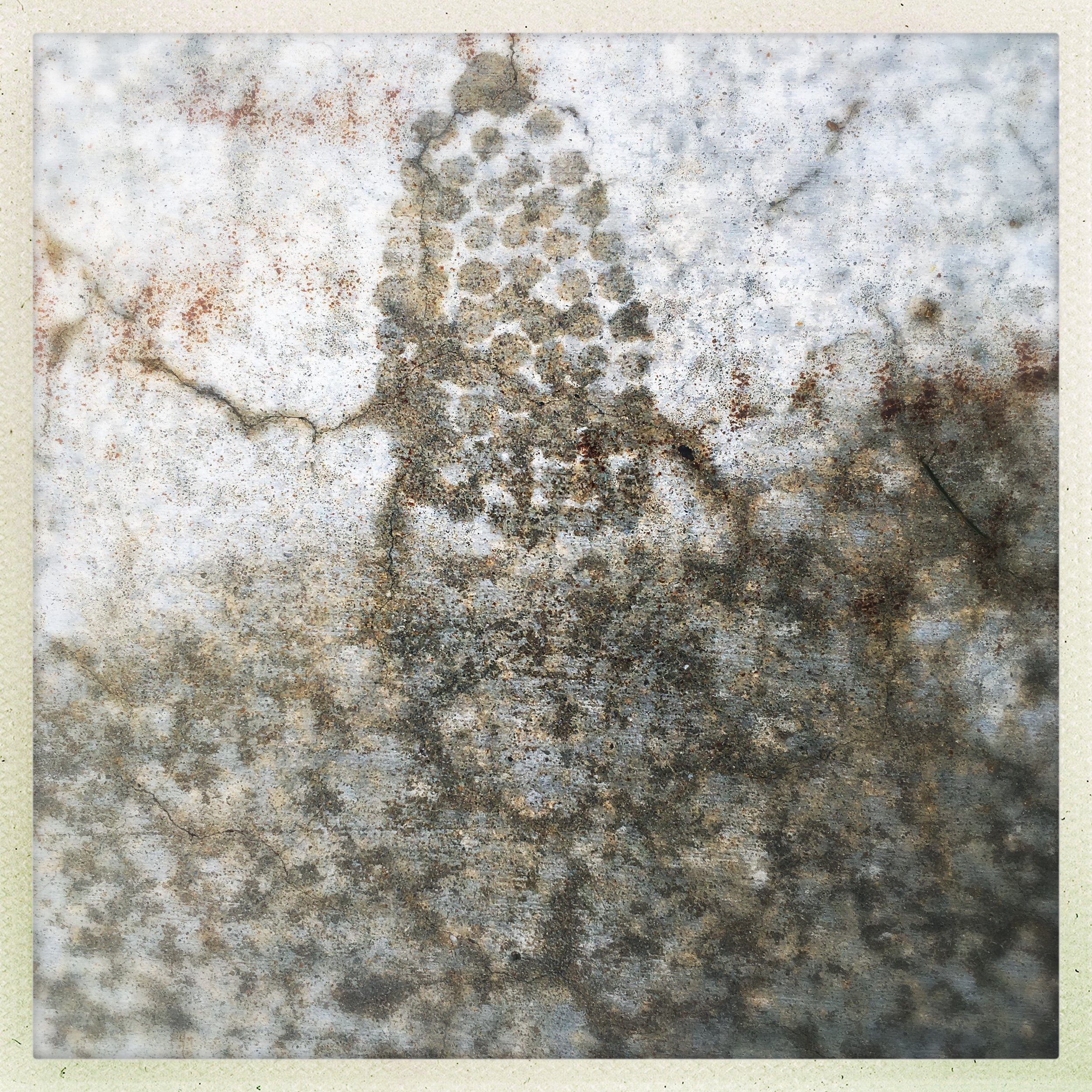 foot constellation