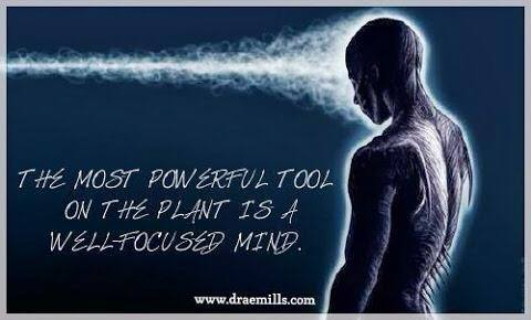 Well Focused Mind.jpg