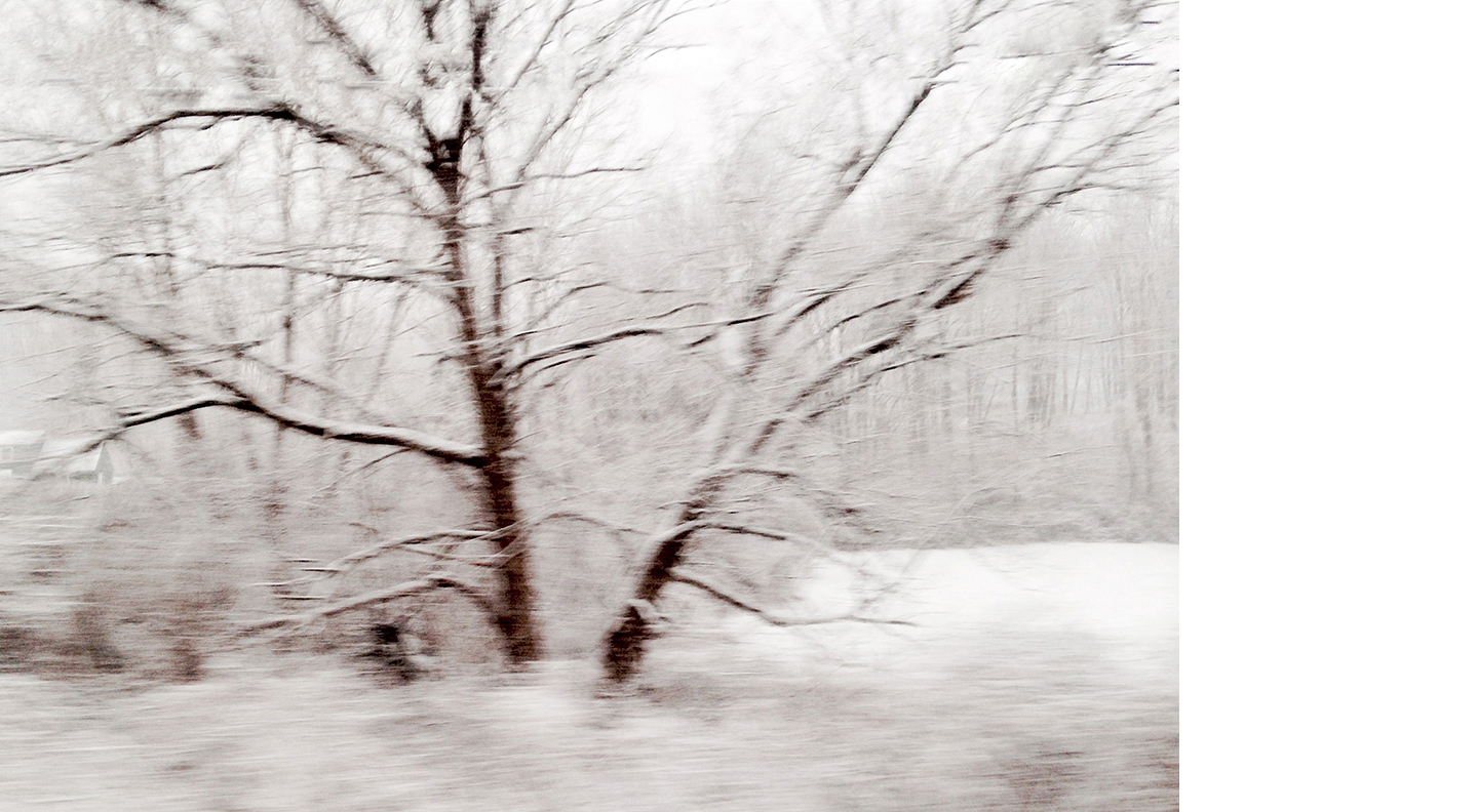 """Winterscape #5   Archival Pigment on Hahnemuhle German Etching Paper Rising Museum Acid Free Mounting Board Acrylite Non -glare UV Filtering Plexi Glass Custom White Oak Frame 29 x 34"""" including a 6"""" white mat border   $950"""