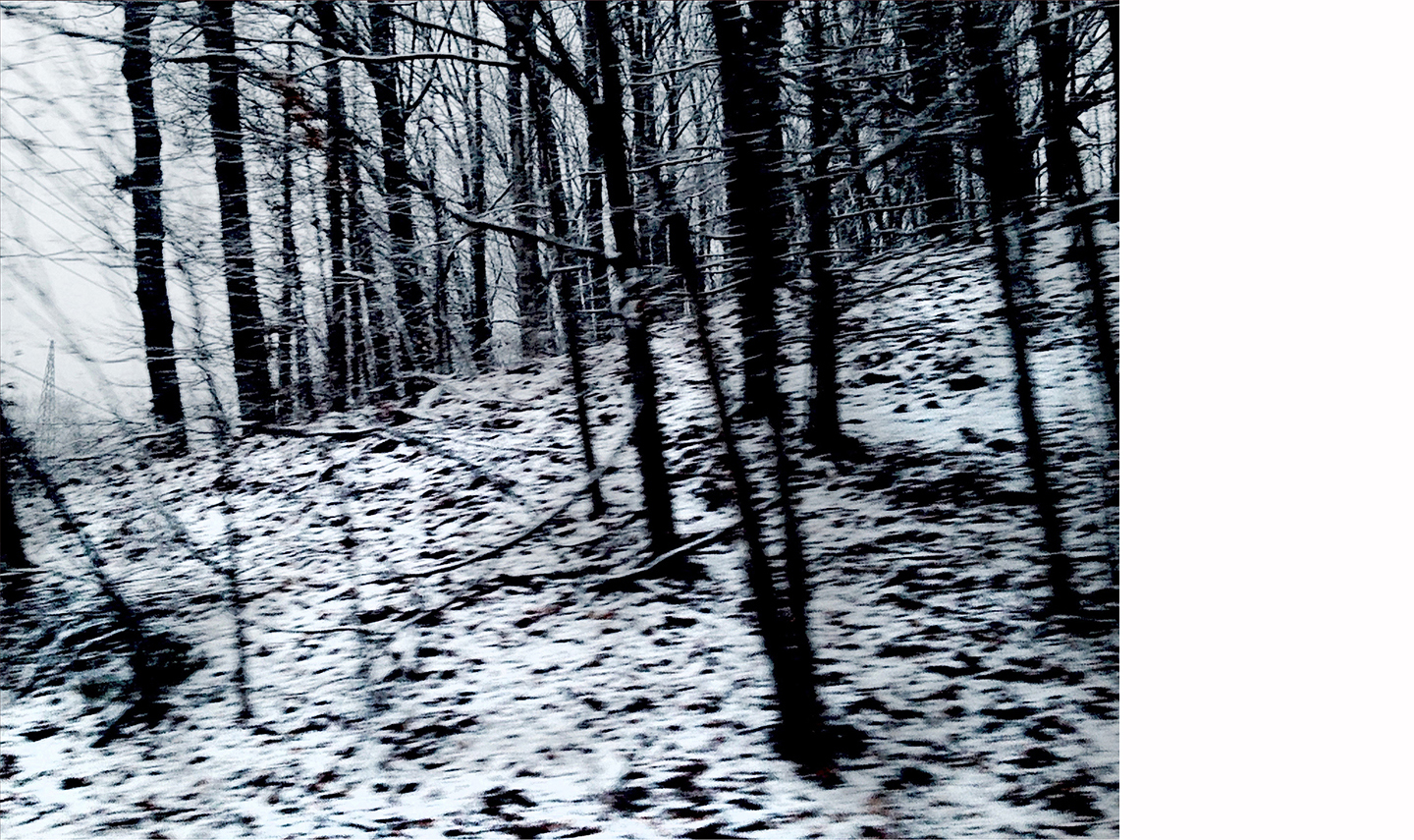 """Winterscape #7   Archival Pigment on Hahnemuhle German Etching Paper Rising Museum Acid Free Mounting Board Acrylite Non -glare UV Filtering Plexi Glass Custom White Oak Frame 29 x 34"""" including a 6"""" white mat border   $950"""