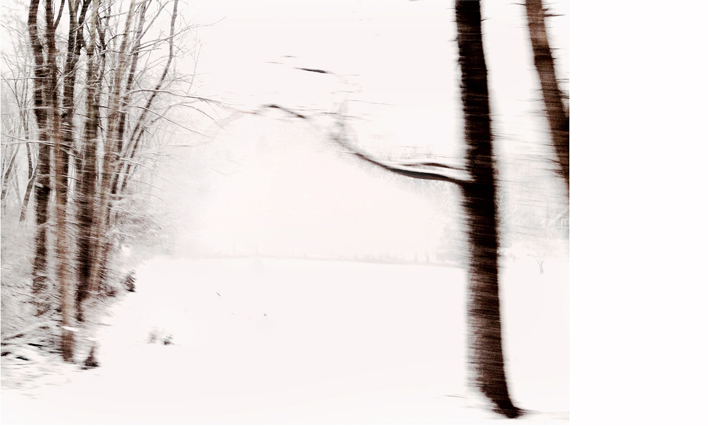 """Winterscape #12   Archival Pigment on Hahnemuhle German Etching Paper Rising Museum Acid Free Mounting Board Acrylite Non -glare UV Filtering Plexi Glass Custom White Oak Frame 28 x 34"""" including a 6"""" white mat border   $950"""