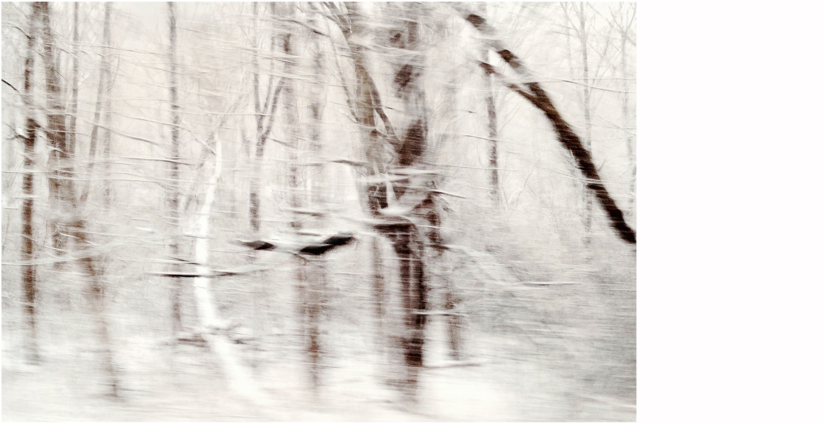 "Winterscape #10   Archival Pigment on Hahnemuhle German Etching Paper Rising Museum Acid Free Mounting Board Acrylite Non -glare UV Filtering Plexi Glass Custom White Oak Frame 29 x 34"" including a 6"" white mat border   $950"