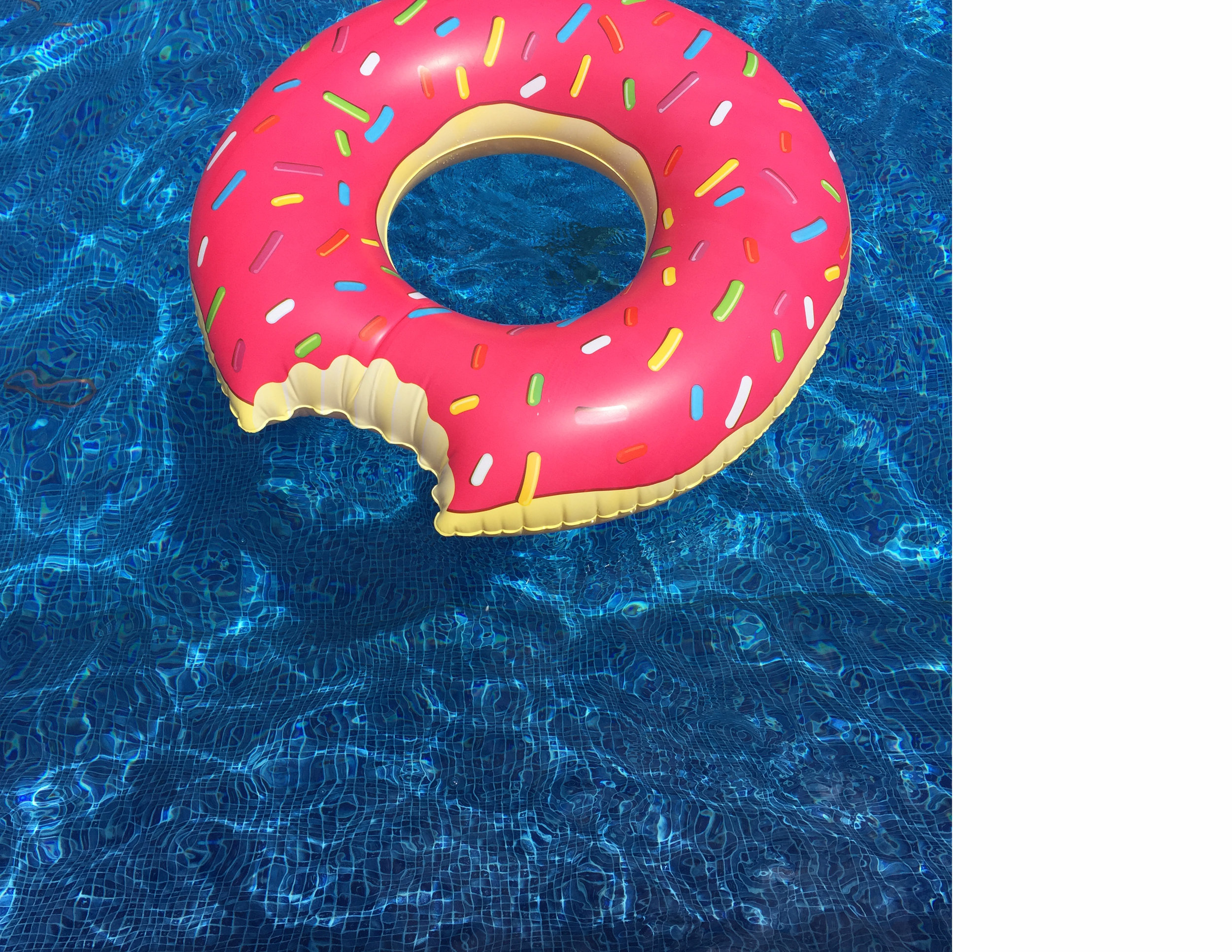 """Donut 22 x 22""""  Archival Pigment Print on Hahnemühle German Etching Fine Art Paper, 5"""" Border Rising Museum Acid Free Matting, Acrylite Non-glare UV Filtering Plexi-glass. White Painted Custom Frame.  $400    Pieces Made to Custom Order*"""