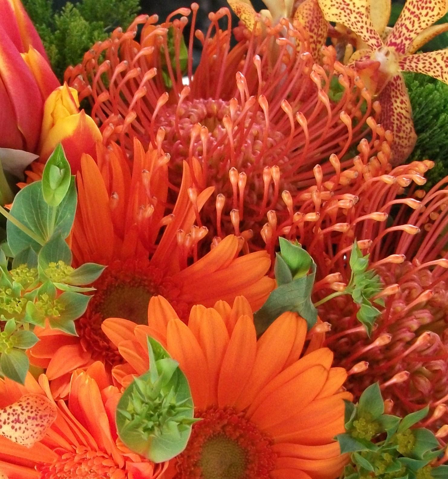 flowers 012copy.jpg