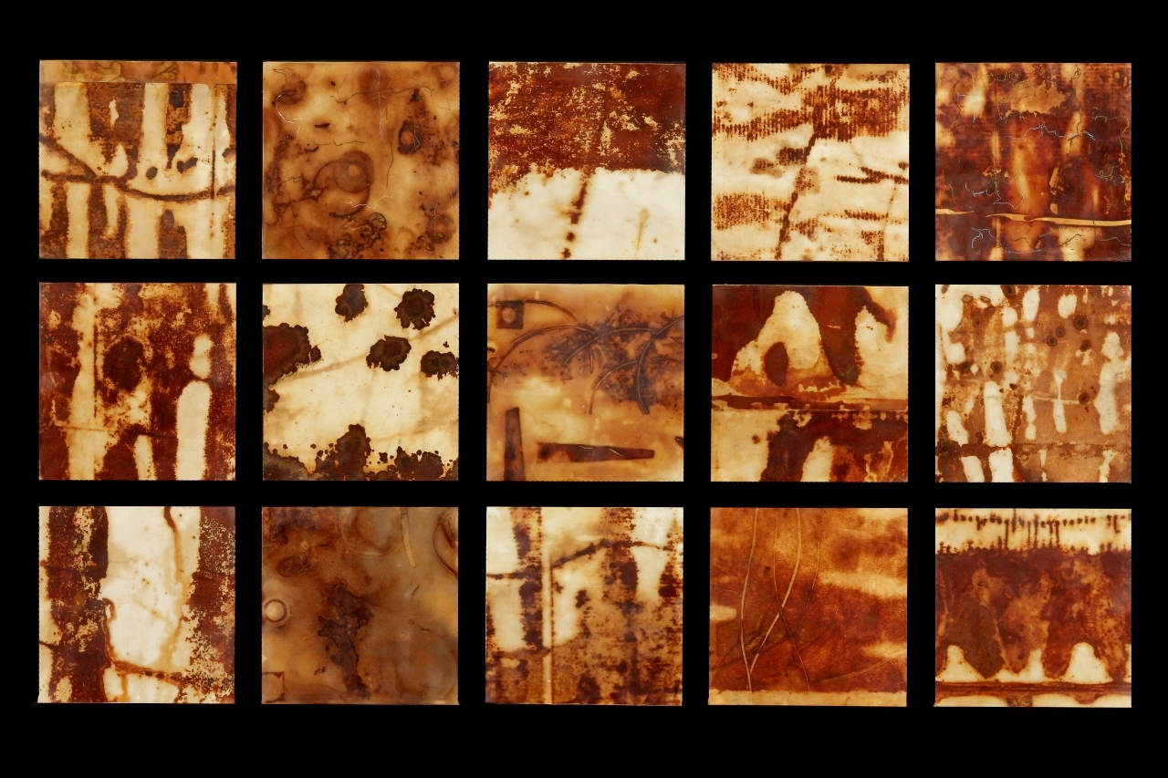 Rust Grouping #1, 2013, Rust, encaustic on paper on panel, (15 pieces) 19 1/2 x 33""