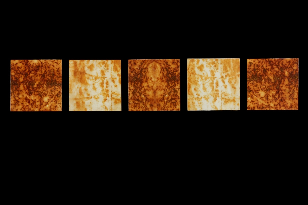 Rust Grouping #2, 2013, Rust, encaustic on paper on panel, (5 pieces) 6 x 33""