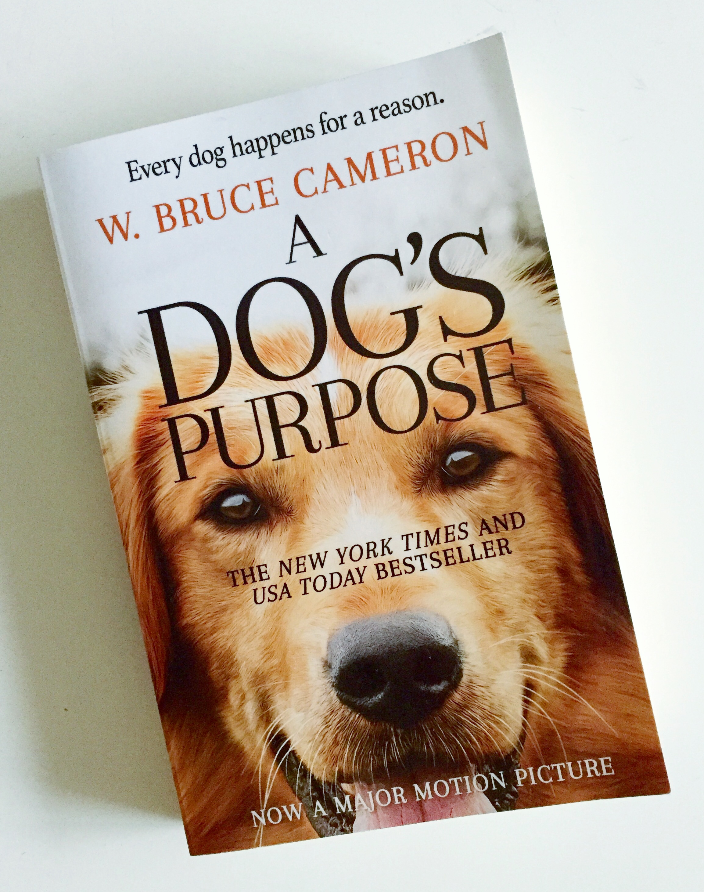 A Dog's Purpose Book.jpg