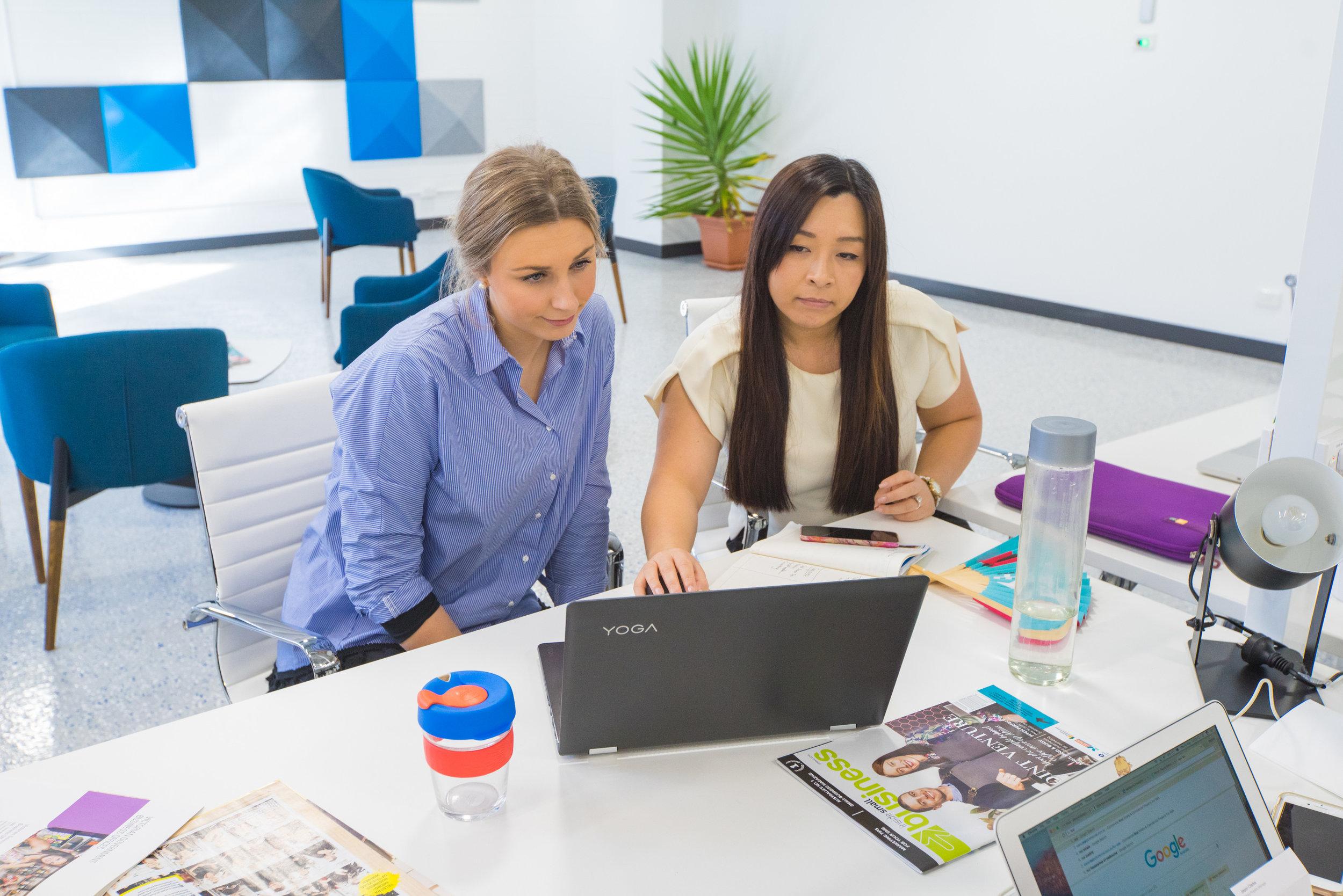 Entrepreneur Mentoring Program