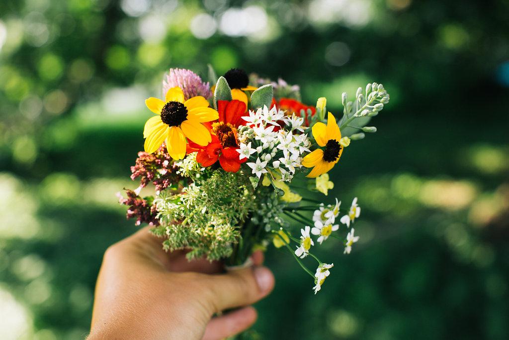 Farmhouse.Flowers_at_Mayneland.Farm-6982.jpg