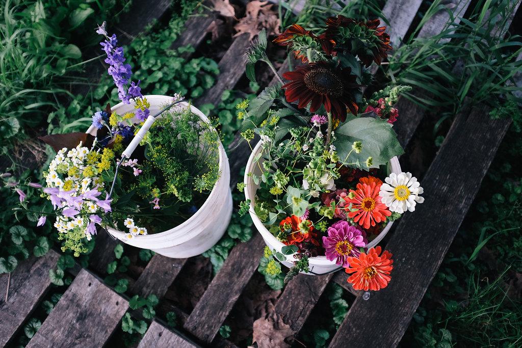 Farmhouse.Flowers_at_Mayneland.Farm-2567.jpg