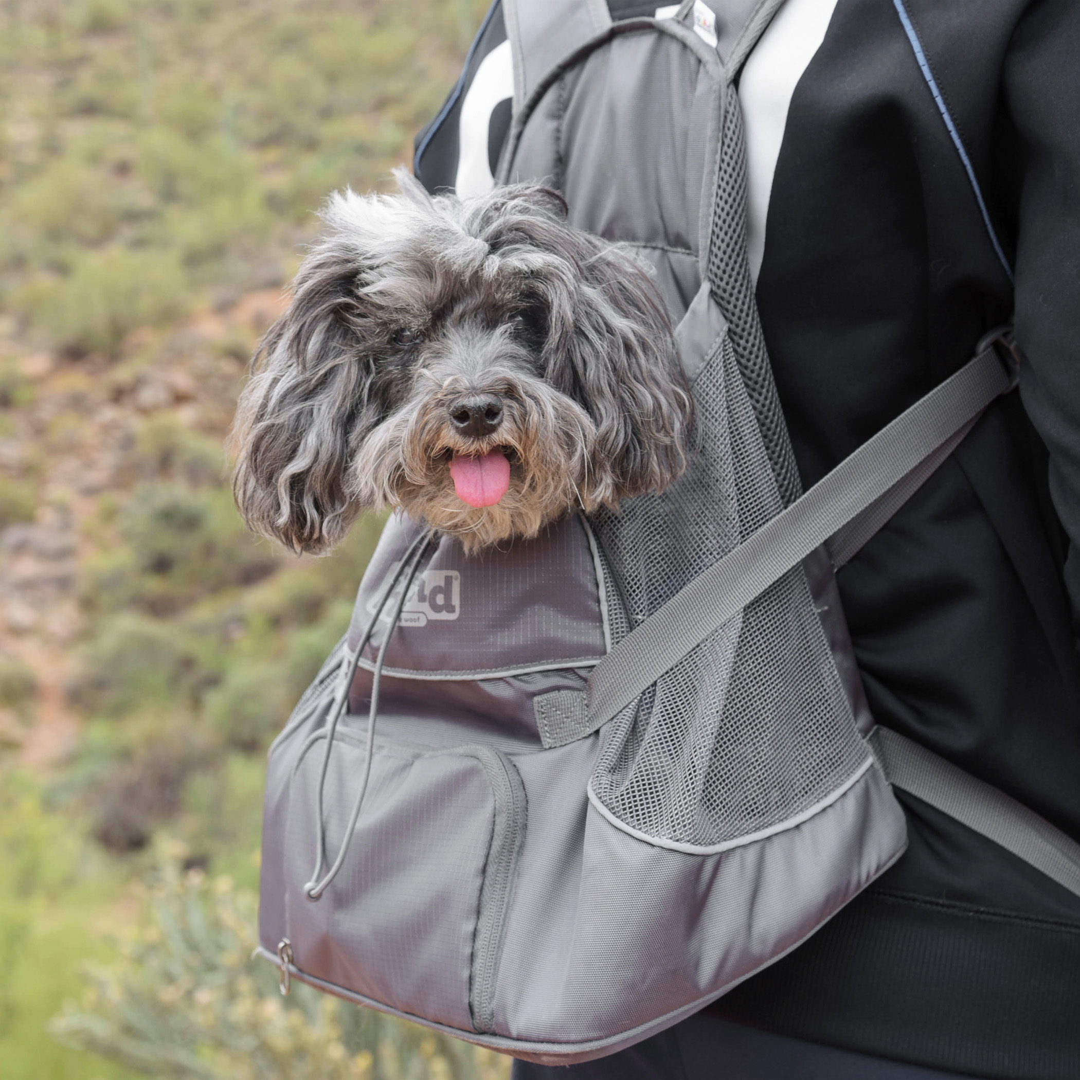 If you've ever wondered how Joey & Benji go hiking, this is how. Joey rides with his Daddy (so he can keep an eye on Mom!), and Benji rides with Mom. The backpacks are from  Outward Hound and are made just for pups. They're easy to load in and easy to load out when we need to make a photo shoot pit stop. They both love being along for the ride! It's the perfect solution when you have one 15 year old pup and one blind & deaf pup.