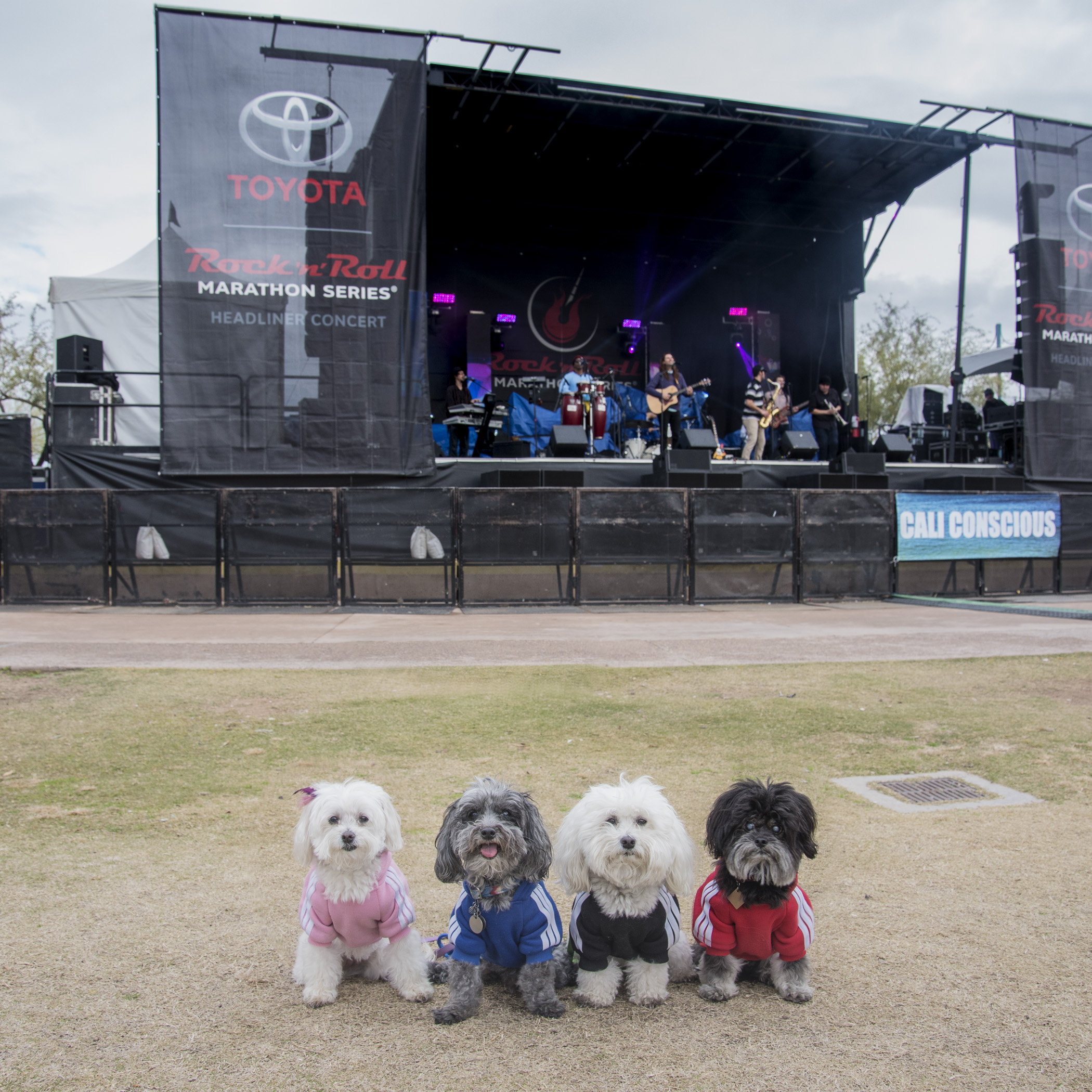 While we were waiting for them to cross the finish we checked out the Headliner Band…they were a little loud for our taste. We needed those big noise muffling ear muffs, that little kids wear.