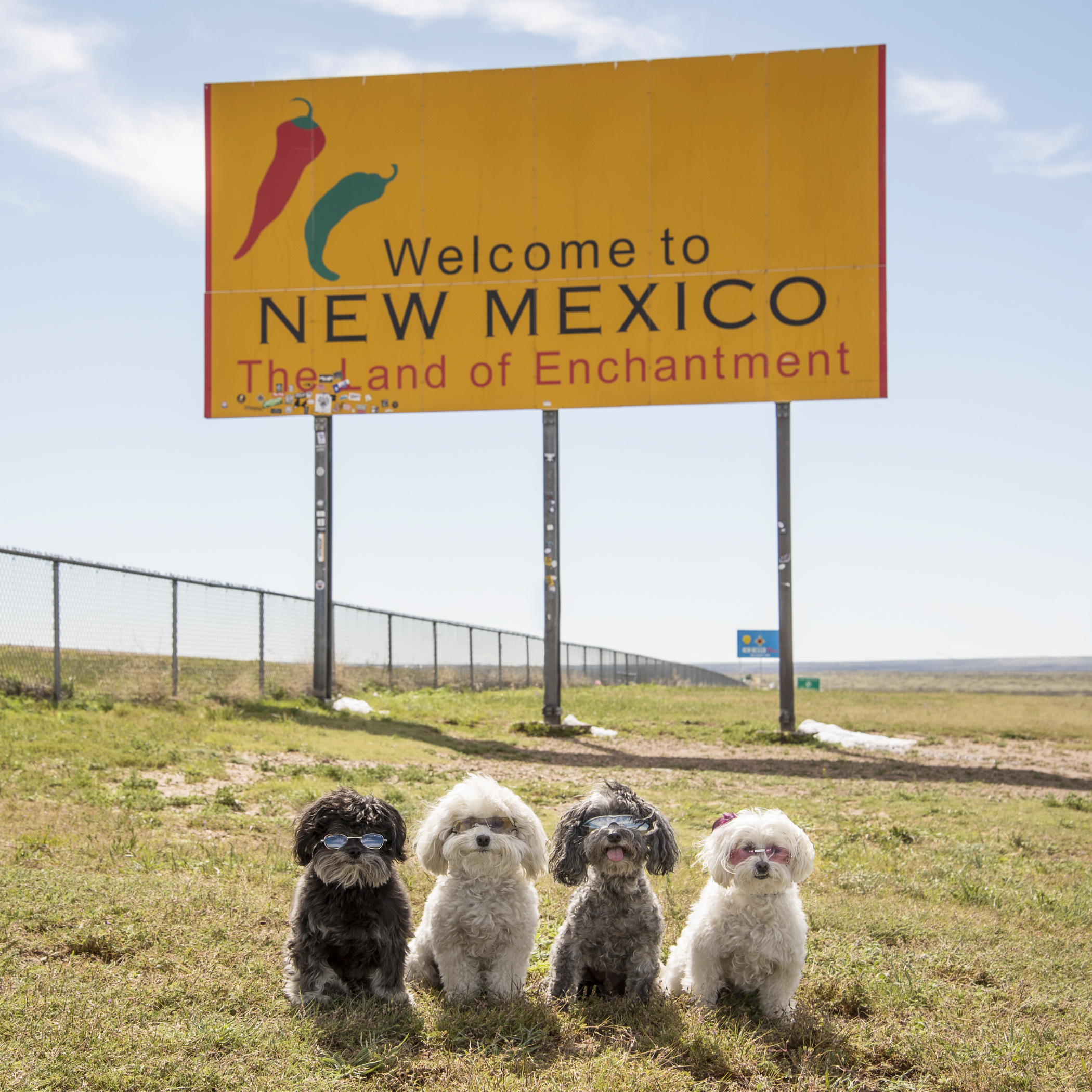 New Mexico…we have never been so happy to see you! Sun, blue skies, temperatures in the 60s, less wind, no snow, no rain…the desert is getting closer and closer! This roadie is looking up from here!