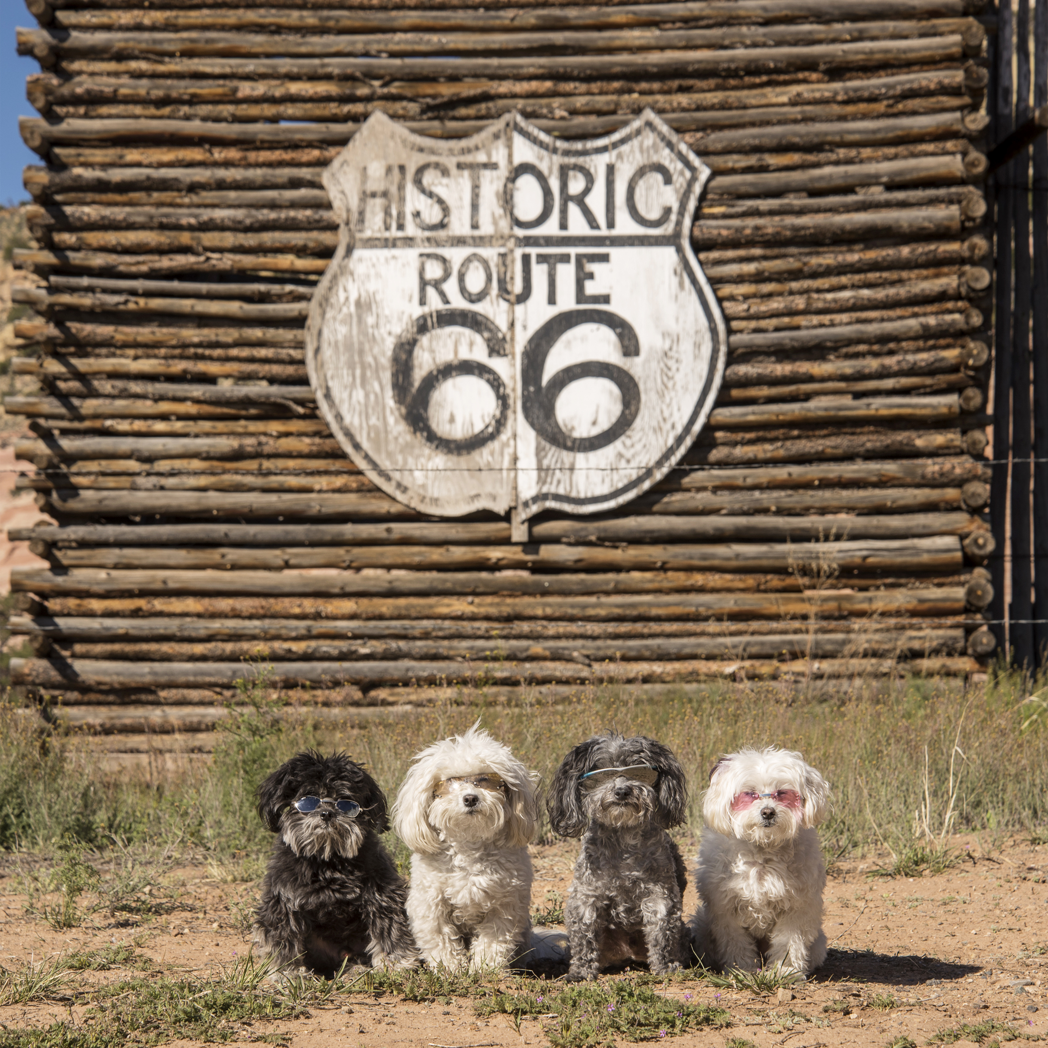 We be getting our kicks on Route 66!