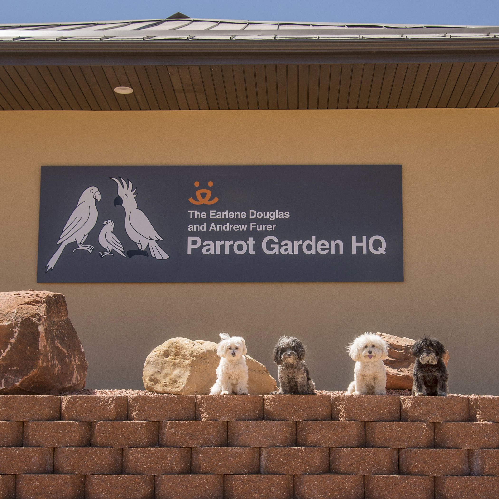 Up next for Mommy & Daddy was Parrot Garden. It reminded Mommy of their trip to Australia, being surrounded by so many beautiful Feathered Friends! Birds lose their homes just like other pets. In fact, because parrots live such a long time, they can become homeless many times over the course of their lives.