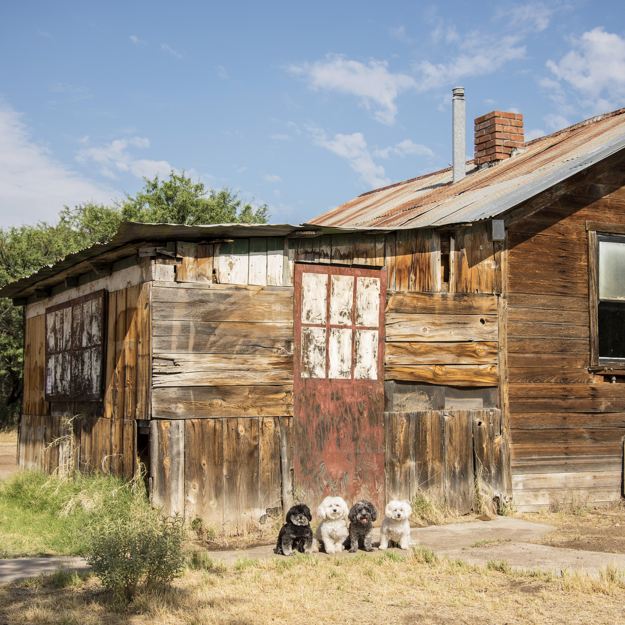 We made sure to check out the local ghost town and scare off any lingering spirits.