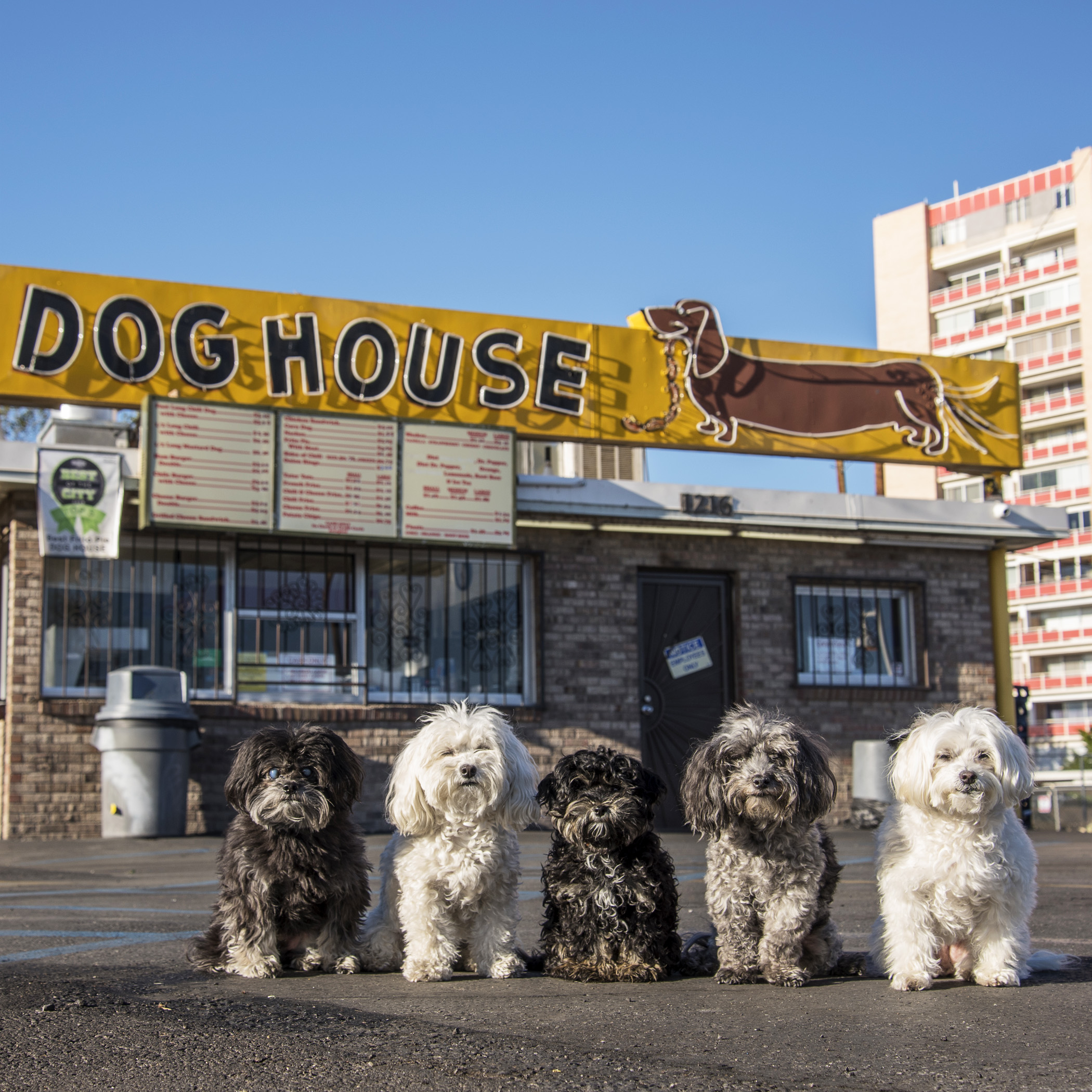 The Dog House. We were hoping to find Jesse and his free money, but no luck!