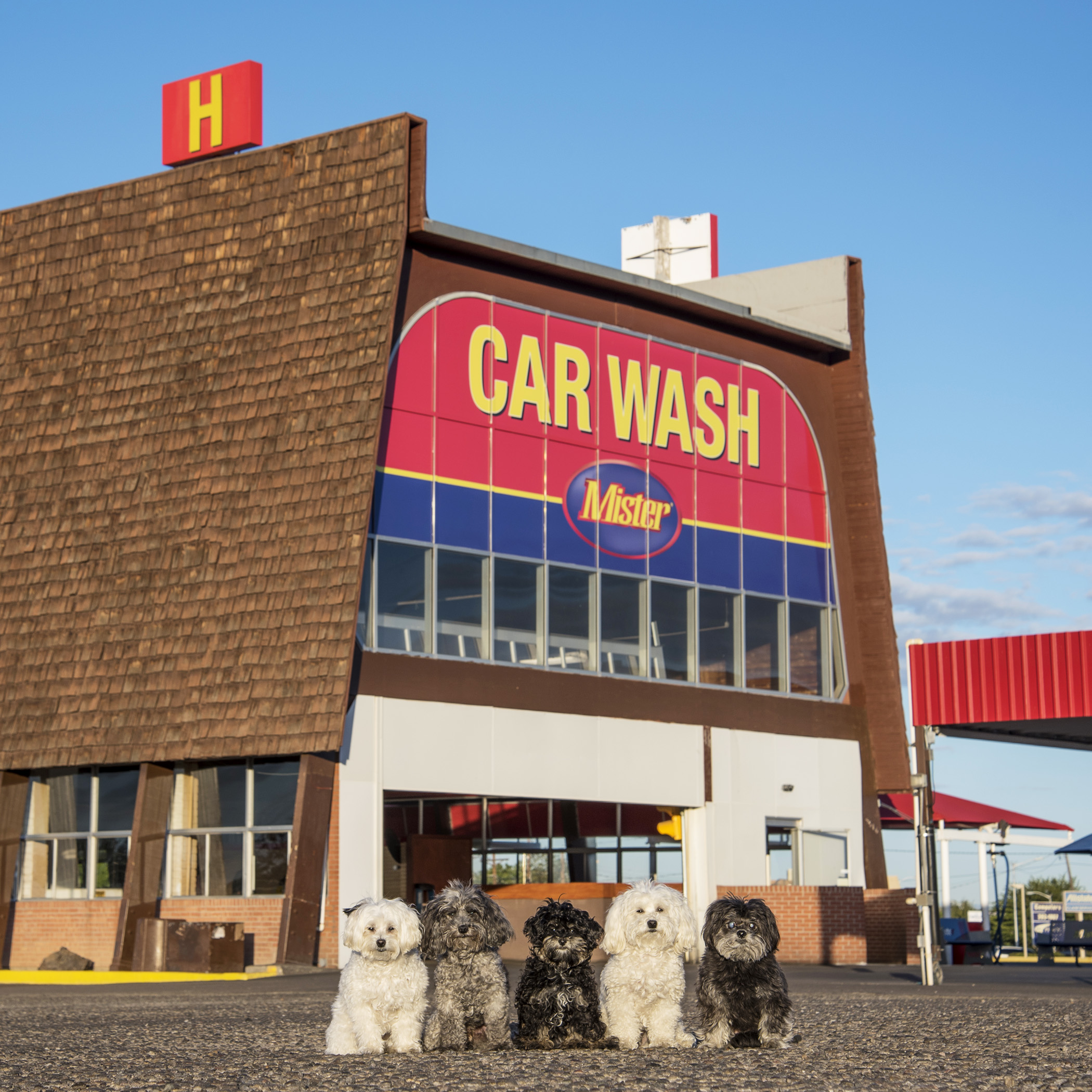 The Car Wash. Have an A1 Day!