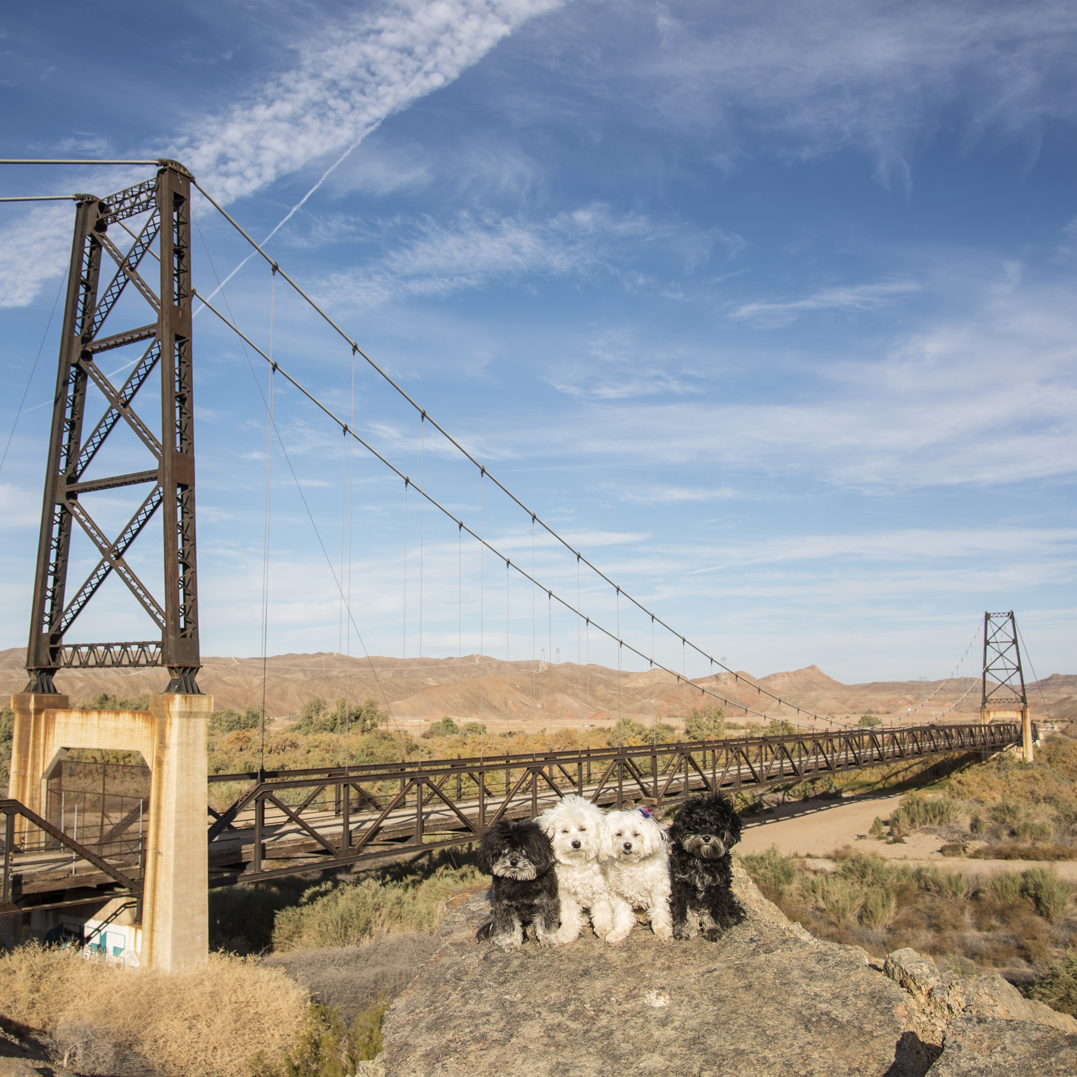 Then, of course, there's always the ridiculous stops that Mom makes us do. Like this one,The Bridge to Nowhere, also in Yuma, AZ. This is an amazing bridge and it literally goes nowhere!